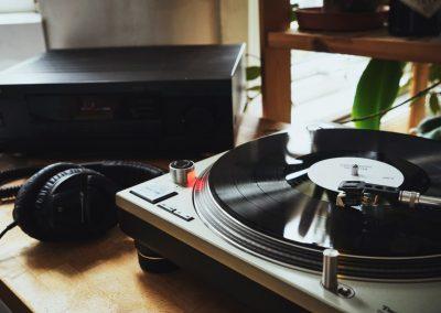 Vinyl Carvers - 25